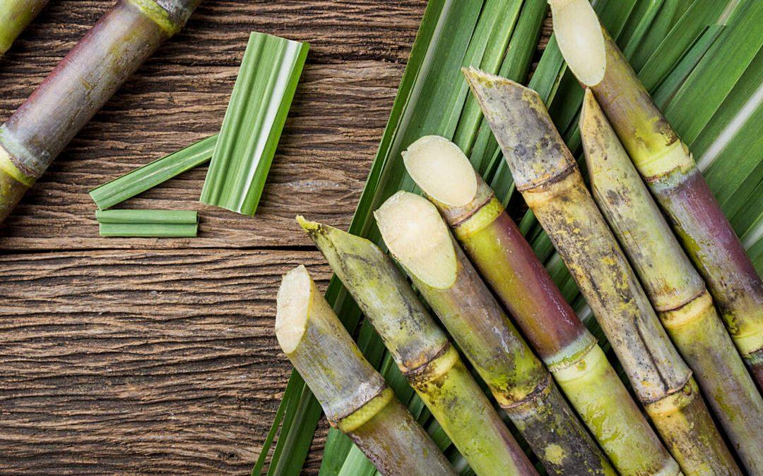 Is Sugarcane Healthy?